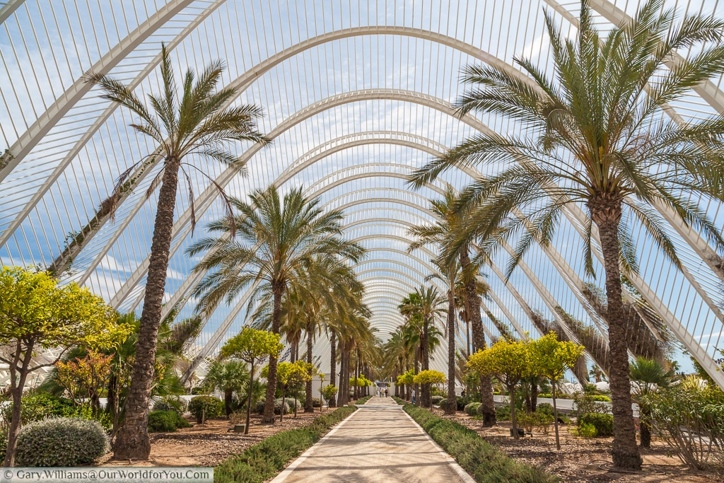 The Umbracle in the City of Arts and Sciences, Valencia, Spain