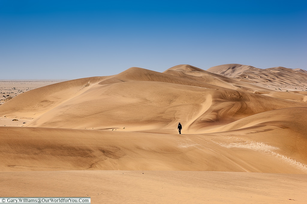 Chris Nel reflects amongst the dunes, Living Desert Adventures, Walvis Bay, Swakopmund, Namibia