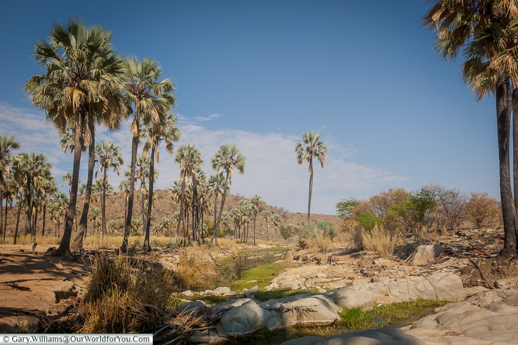 The stream that runs to the Himba village, Damaraland, Namibia