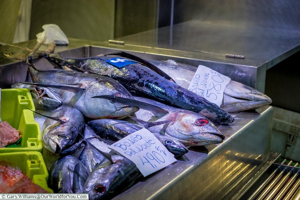 Fresh fish at the Mercado, Bilbao, Spain